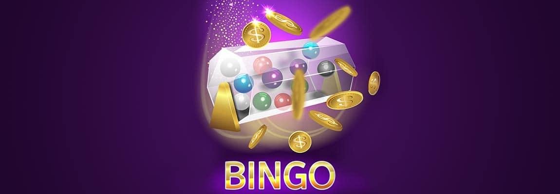 jocuri bingo online