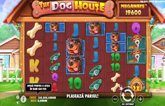 the dog house betano jocuri